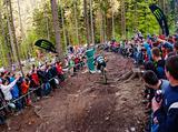 Puchar Europy w Downhillu - Wisłą 2014