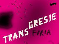 "Festiwal Transgresje ""Furia"""