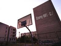 Czarny HIFI - Niedopowiedzenia - złota płyta